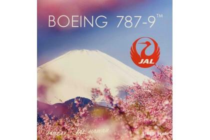 "Japan Airlines B787-8 ""JAL Arashi Hawaii"" JA873J (1:400 scale)"